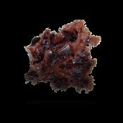 rod-sponge-spongejet