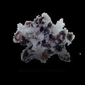 silver-sponge-spongejet